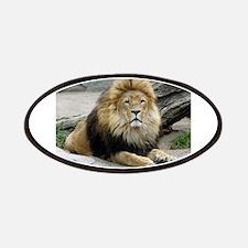 Lion20150805 Patch