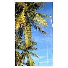 Tropical Breeze-SGS5 Poster