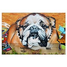 STREET ART BULLDOG ANIMAL PRINT Poster