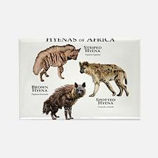 Hyenas of Africa Rectangle Magnet
