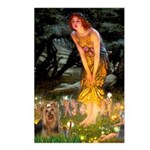 Midsummer / Yorkie Postcards (Package of 8)