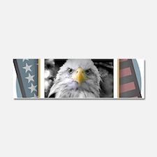 American Eagle Car Magnet 10 x 3