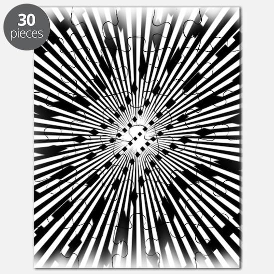 Cool Fractals Puzzle