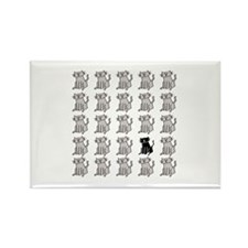 One Special Black Kitty Rectangle Magnet
