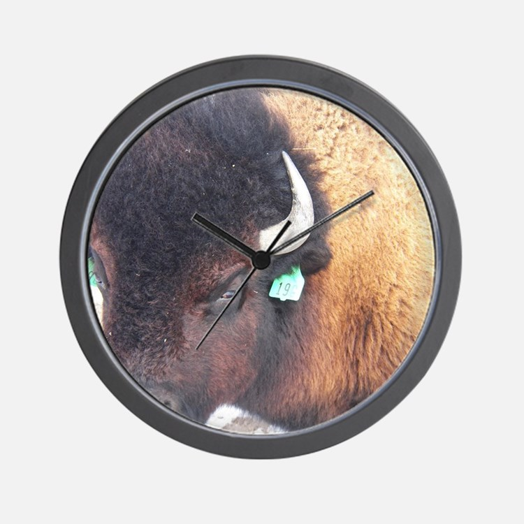 Cute Fargo north dakota Wall Clock