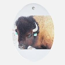 Cute North dakota bison Oval Ornament