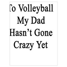 Thanks To Volleyball My Dad Hasn't Gone Crazy Yet  Poster