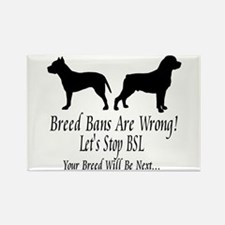 Stop BSL Rectangle Magnet