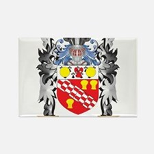 Ricardo Coat of Arms - Family Crest Magnets