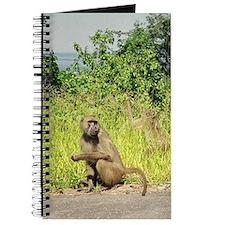 Baboon Journal