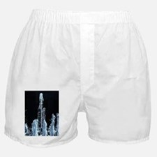 The Big Squirt Boxer Shorts