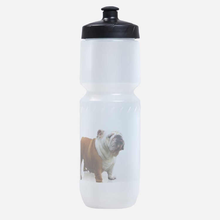 Bulldog Sports Bottle