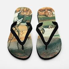 Noah's Ark by Edward Hicks Flip Flops