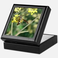 Stinging Insect on Fennel Keepsake Box