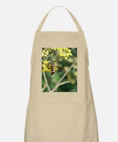 Stinging Insect on Fennel Apron