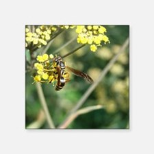 "Stinging Insect on Fennel Square Sticker 3"" x 3"""