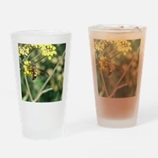 Stinging Insect on Fennel Drinking Glass