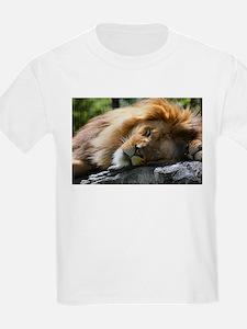 Funny Des moines T-Shirt