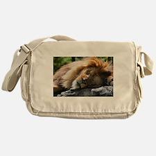 Funny Animal Messenger Bag