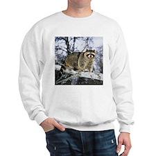 Cool Racoon Sweatshirt