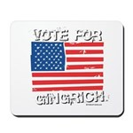 Vote for Gingrich Mousepad