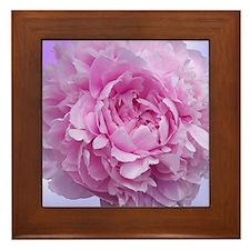peony flower Framed Tile
