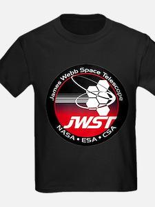 JSWT NASA Program Logo T