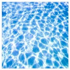 Dappled Water Poster