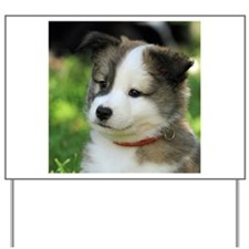 IcelandicSheepdog-Puppy Fengur Yard Sign
