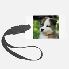 IcelandicSheepdog-Puppy Fengur Luggage Tag