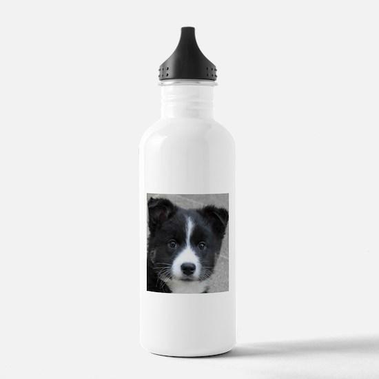 IcelandicSheepdog007 Water Bottle