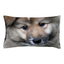IcelandicSheepdog004 Pillow Case