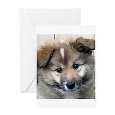 IcelandicSheepdog004 Greeting Cards
