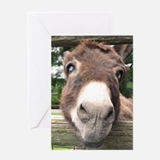 Birthday Humor Getting Older Donkey Greeting Cards