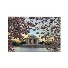 Cute Washington dc cherry blossom Rectangle Magnet (10 pack)
