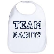 Team Sandy Bib