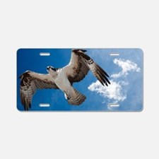 Flight of the Osprey Aluminum License Plate