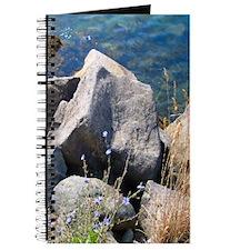 Summer Asters Journal