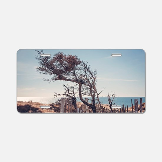 Graveyard by the sea Aluminum License Plate