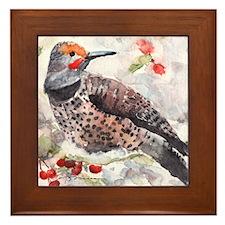 Flicker Woodpecker Framed Tile