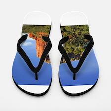 Sedona Flip Flops
