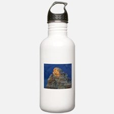 Grand canyon picture Water Bottle