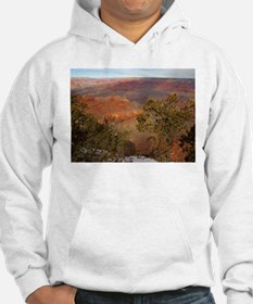 Grand canyon picture Hoodie