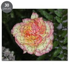 Yellow And Pink Carnation Flower Puzzle