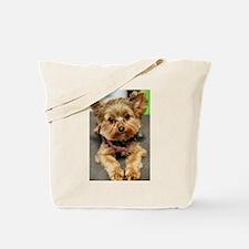 Cute Yorkshire terrier Tote Bag