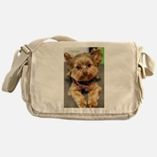 Cute Yorkshire terrier Messenger Bag