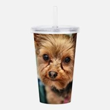 Funny Yorkshire terrier Acrylic Double-wall Tumbler