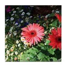 Red Gerbera Daisies Tile Coaster