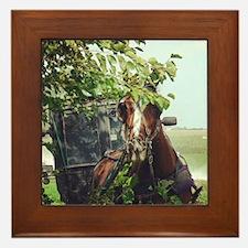 Cute Amish Framed Tile