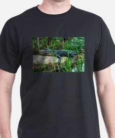 Young Alligator T-Shirt